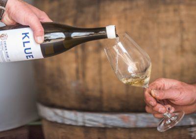 Klue Wines-71 (Large)